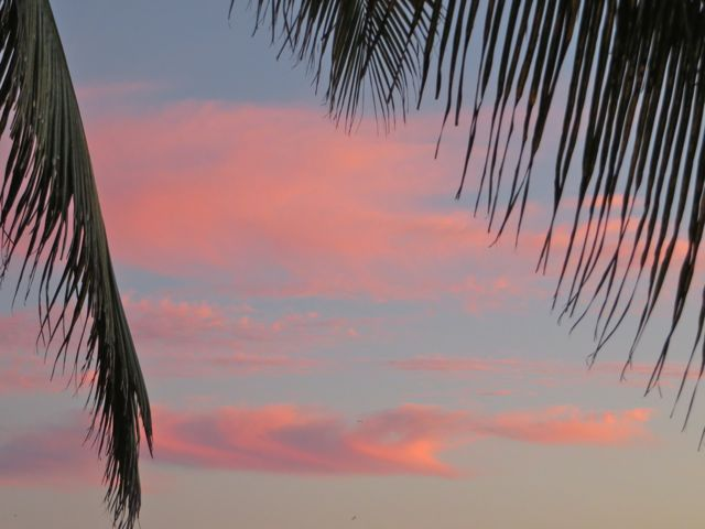 Loved these fluffy colored clouds the other night at sunset.