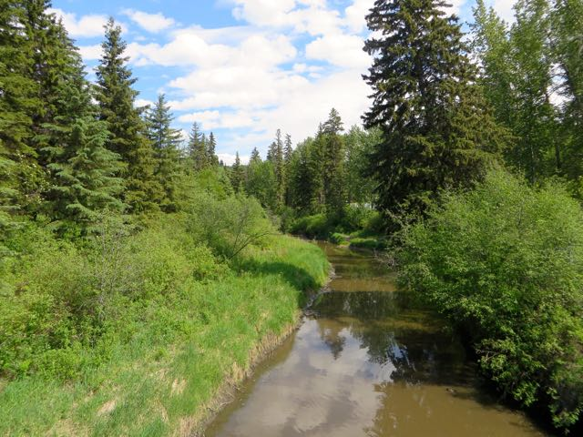 It overlooks Whitemud Creek and is used by many hikers and joggers.  No bikes allowed.