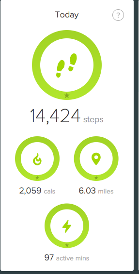 It was a new record for my yesterday.  I walked 6 miles setting up it.