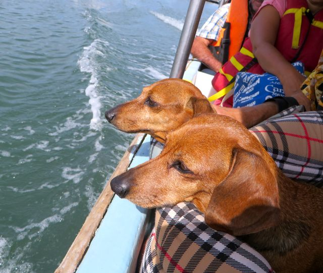 The girls were tired but perked up on the boat ride back to the Isla.