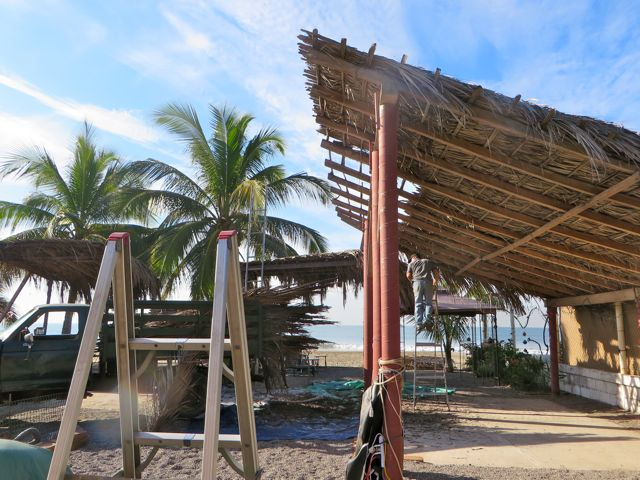About 8:30AM Monday Lupe pulls in and starts to take the old palapa apart.  We was supposed to start on the little one so we were not ready.