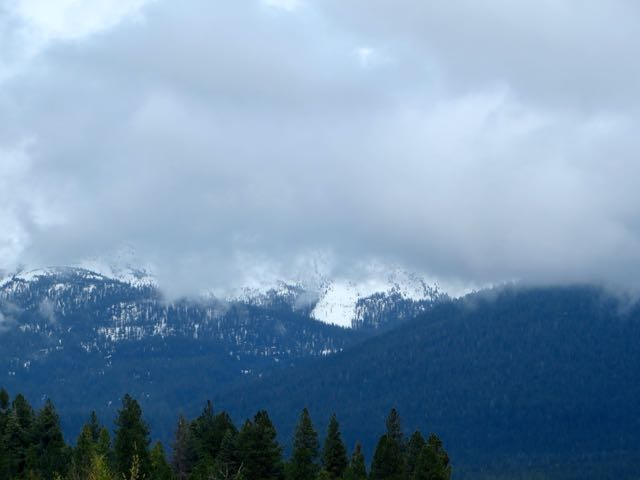 Mount Shasta hiding in the clouds. So very lovely when we do get to see it.