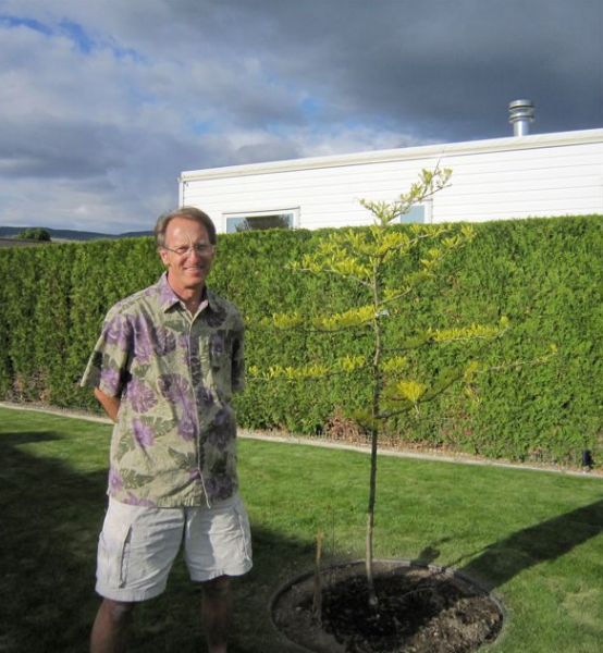 Back in 2011 I surprised Colin with a tree for his birthday. We were not even living here yet, just the RV.