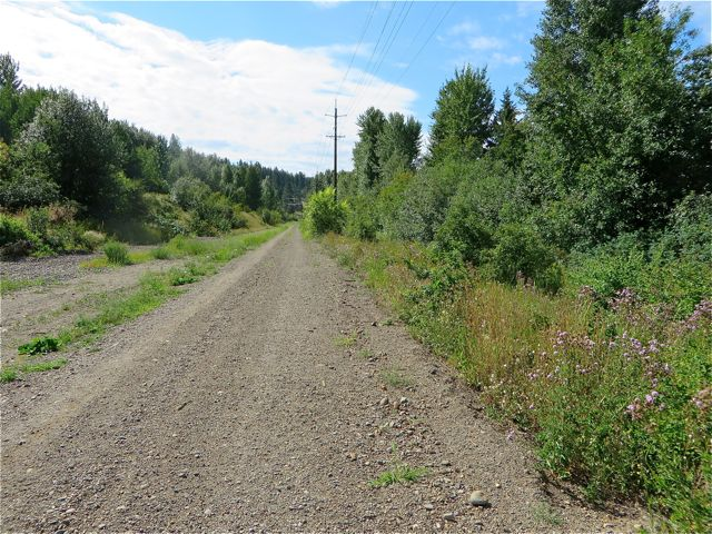 The rail trail is a very long, 50 KM route of rail line that has been purchased by a bunch of levels of govenermtnet in order to remover the rails. In their place a proper trail is to be built for hikers, walkers and bikers.