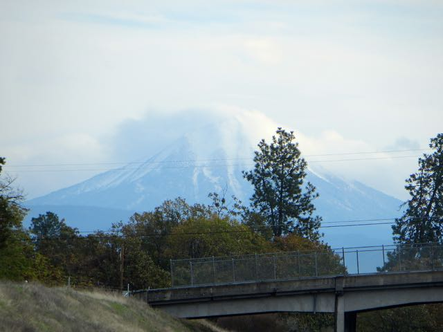 Not a good day to see Mt. Shasta.